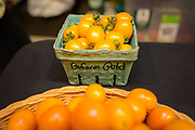 TOMATO<br /> Curator: John Augustine, Augustine Family Farm / GoFarm Hawai'i Incubator. Over the past 5 years, GoFarmers have also selected a new variety, recently dubbed 'GoFarm Gold', in honor of its orange color and its blue ribbon at the Kauai County Fair. GoFarm Gold was selected from the red hybrid cherry tomato 'Merlot' which is no longer available, and selected by GoFarmers over the past five years for production, taste, virus resistance, and semi-determinate habit. 'GoFarm Gold' seed will soon be offered via the Hawaii Seed Growers Network.