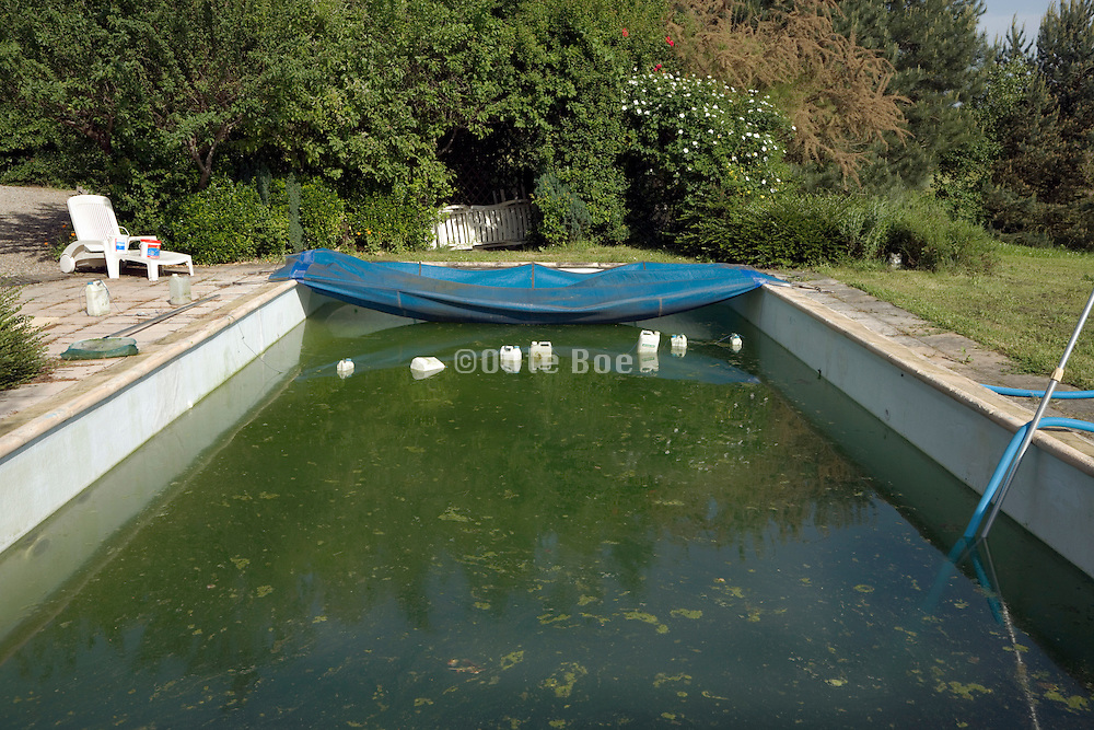 just opened up swimming pool and finding the water all green