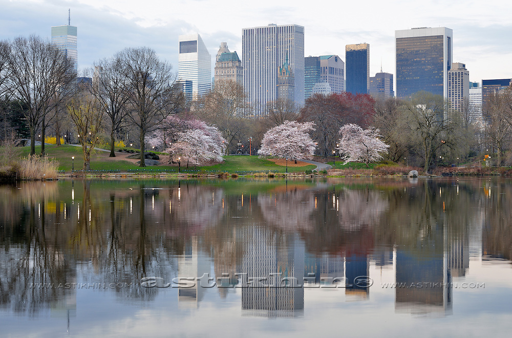 Spring in Central Park, New York City, USA