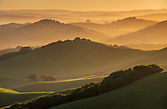 Sunrise over rolling green hills in spring near Petaluma, Sonoma County, California