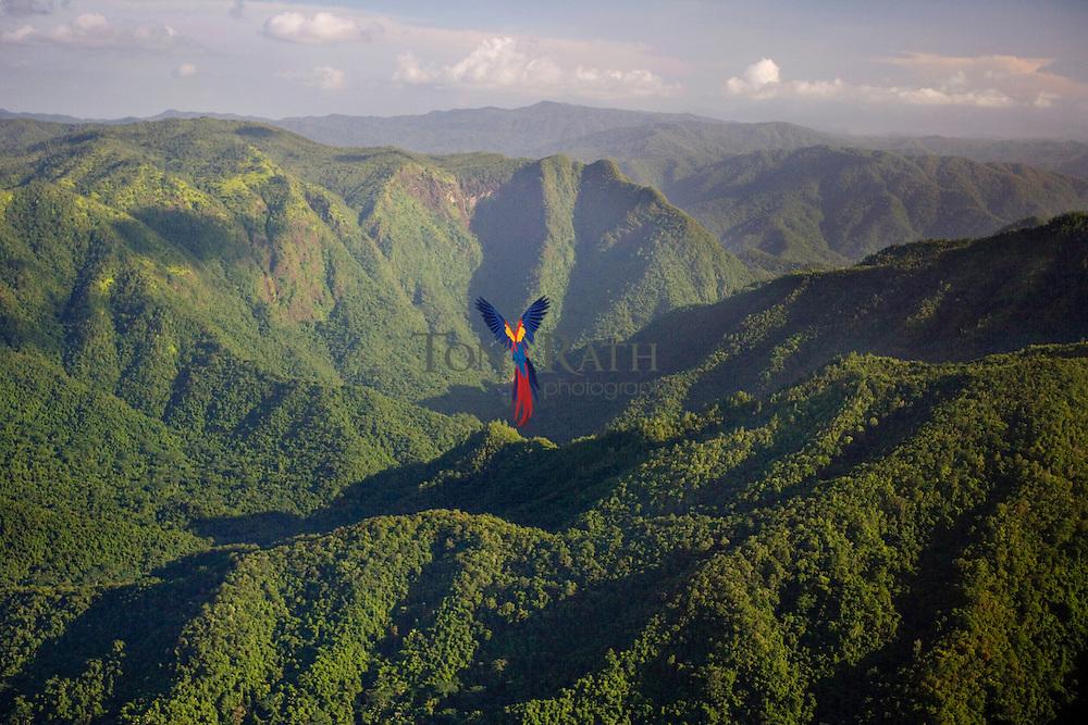 Aerial of Sibun River Gorge, 17° 05.3'N 88° 40.13'W