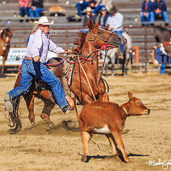 Twin Bridges NRA Rodeo