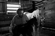 A family owned horse farm in Crozet, Virginia has been with the Jones' for over a century. The struggle to maintain Smallwood Farm within the family lies with the matriarch's grandchildren and if they'll stay in horse country.
