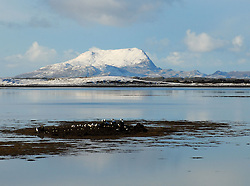 Across the calm of Clew Bay, Clare Island made a perfect picture in the wintery light...Pic Conor McKeown..