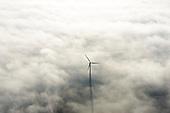Winterse windmolens l Windmills in the winter