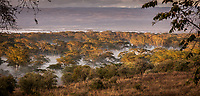 Misty Surrounds Lake Nakuru