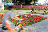 Love River in Kaohsiung, Taiwan is a beautiful area for everyone.  It features bicycle and pedestrian trails along both banks.