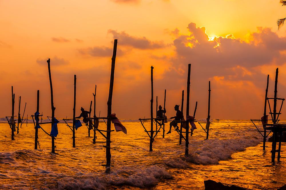 Stilt fishermen fishing at sunset, Ahangama, Southern Province, Sri Lanka.