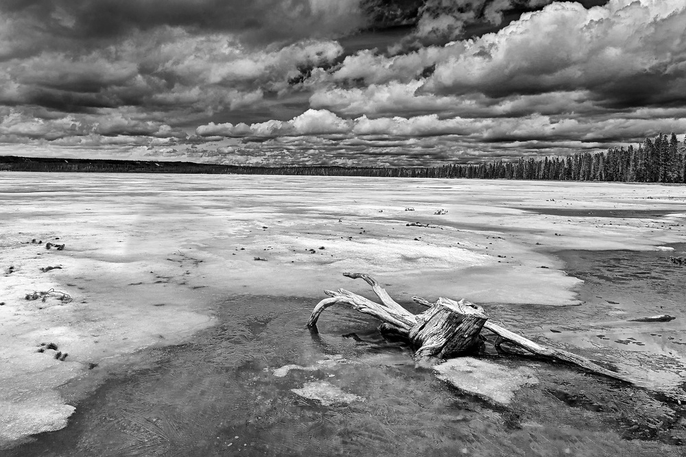 Limited edition photograph of an early June, and still frozen, Lewis Lake.