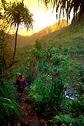 Hiker, Hanakapiai Valley, Napali Coast, Kauai, Hawaii, USA<br />