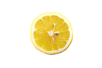 Lemon slice on white background