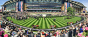 © Licensed to London News Pictures. 17/06/2014. Ascot, UK. A panoramic picture taken on an iPhone of the parade ring.  Day one at Royal Ascot 17th June 2014. Royal Ascot has established itself as a national institution and the centrepiece of the British social calendar as well as being a stage for the best racehorses in the world. Photo credit : Stephen Simpson/LNP