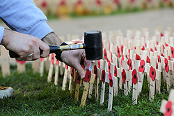 © Licensed to London News Pictures. 05/11/2019. London, UK. Volunteers from The British Legion place tributes in the Fields of Remembrance at Westminster Abbey. Each cross carries a personal message to someone who lost their life in the Service of the United Kingdom. Photo credit: Dinendra Haria/LNP