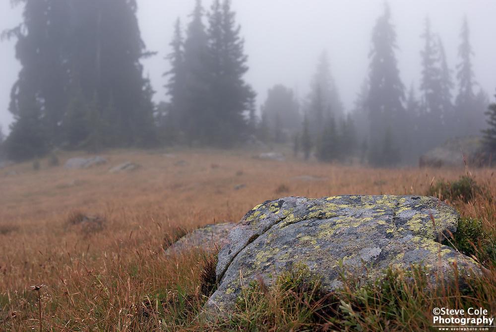 Sunny Pass In Fog - Pasayten Wilderness