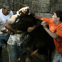 Festival Ramba du Besta, en Galicia, Espa&ntilde;a FOTOS: BERNARDO DE NIZ<br />
