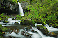 Ponytail Falls, Columbia River Gorge National Scenic Area, Oregon
