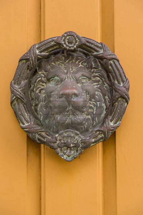 A decorative lion door knocker in Charleston, SC