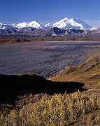 Mt. McKinley, Mount McKinley, McKinley River, Tundra, Fall Colors, Fall, Autumn, Denali, Denali National Park, National Park, Alaska