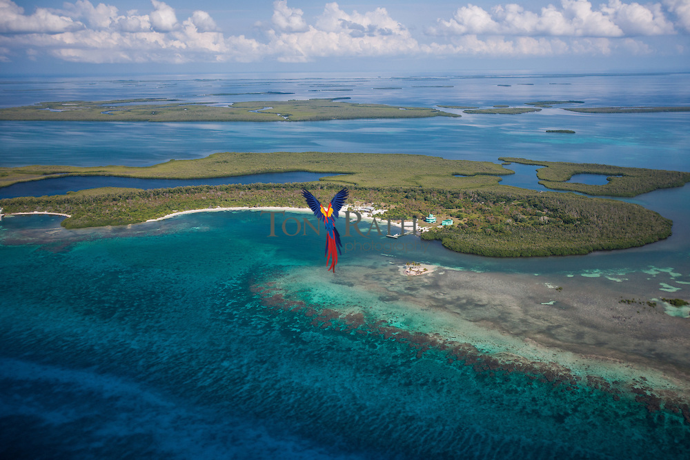 Aerial view of Calabash Caye Marine Field Station in the Turneffe Atoll.