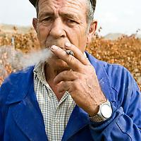 Spanish wine (Ribera del Duero)