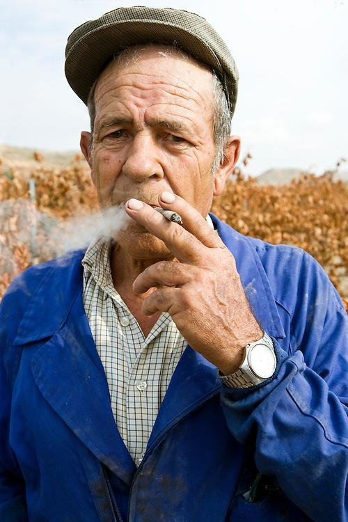 Local man enjoying a cigarrette-break in the harves day in Ribera del Duero (Spain).<br /> <br /> In trabajador del campo hace una pausa para fumar un cigarrillo el d&iacute;a de la vendimia en Ribera del Duero (Espa&ntilde;a)