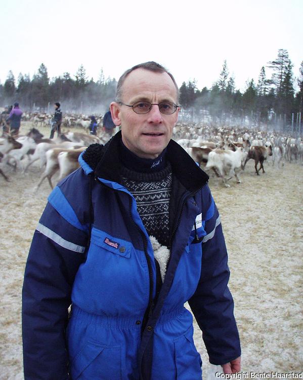 Per Storli, veterinær, Seisjødalen i Snåsa. Levendemåling på rein for å sjekke becquerel-nivå. Er det for høyt må dyrene nedfôres før slakting.