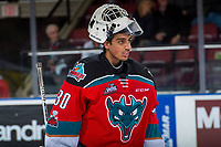 KELOWNA, CANADA - NOVEMBER 25: Roman Basran #30 of the Kelowna Rockets skates to the bench during a time out against the Medicine Hat Tigers on November 25, 2017 at Prospera Place in Kelowna, British Columbia, Canada.  (Photo by Marissa Baecker/Shoot the Breeze)  *** Local Caption ***
