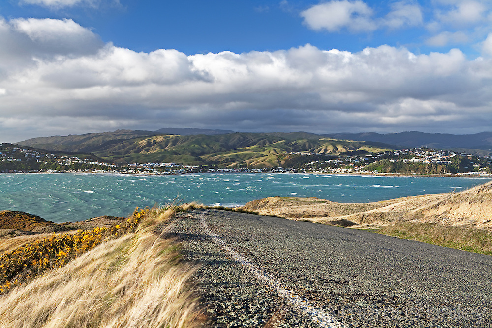 steep camber on the coast road at te onepoto peninula overlooking kapiti coat and porirua harbour with views into the rolling hills beyond, wellington, new zealand