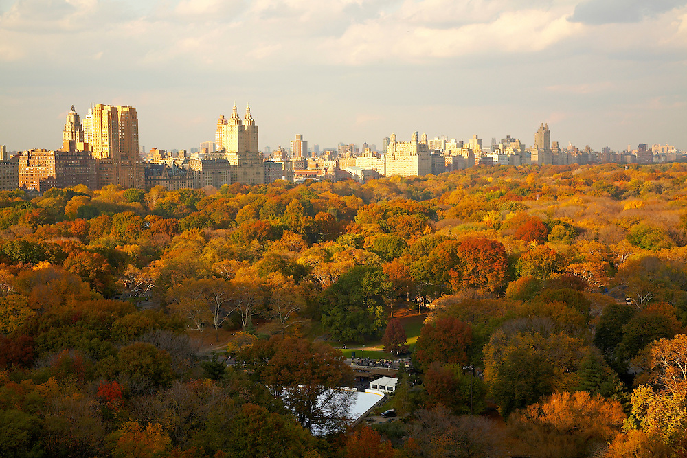 View of Central Park and Central Park West from The Plaza #1703; View from 1 Central Park South