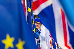 A pro-EU demonstrator Sylvia is glimpsed through a sea of EU and British flags at College Green outside the Houses of Parliament. London, January 14 2019.