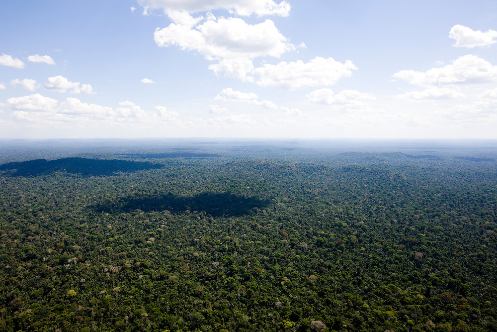 Amazon rainforest at the Esec (Ecological Station) Terra Do Medio, Para State, Brazil, August 13, 2008..Daniel Beltra/Greenpeace