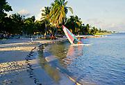 Sandy beach and palm trees at Divi Tiara hotel beach resort, Cayman Brac, Cayman Islands, West Indies c 1990