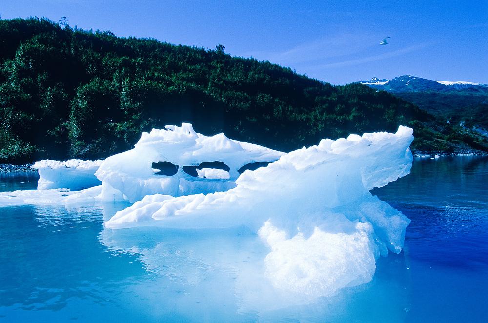 Alaska. Prince William Sound. Shoup Bay iceberg.