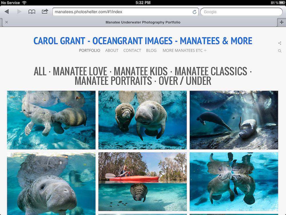 Screenshots of new Oceangrant.com Website using PhotoShelter's BEAM beta Shuffle template.