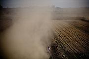 Farmworkers harvest corn silage on Brannan Island, October 29, 2009.