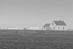 Farm at Eyjafjoll, Iceland - Bóndabær í þoku undir Eyjfjöllum