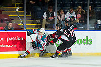KELOWNA, CANADA - FEBRUARY 8:  Ryan Schoettler #16 and Ethan Browne #19 of the Prince George Cougars checks Leif Mattson #28 of the Kelowna Rockets at the boards on February 8, 2019 at Prospera Place in Kelowna, British Columbia, Canada.  (Photo by Marissa Baecker/Shoot the Breeze)