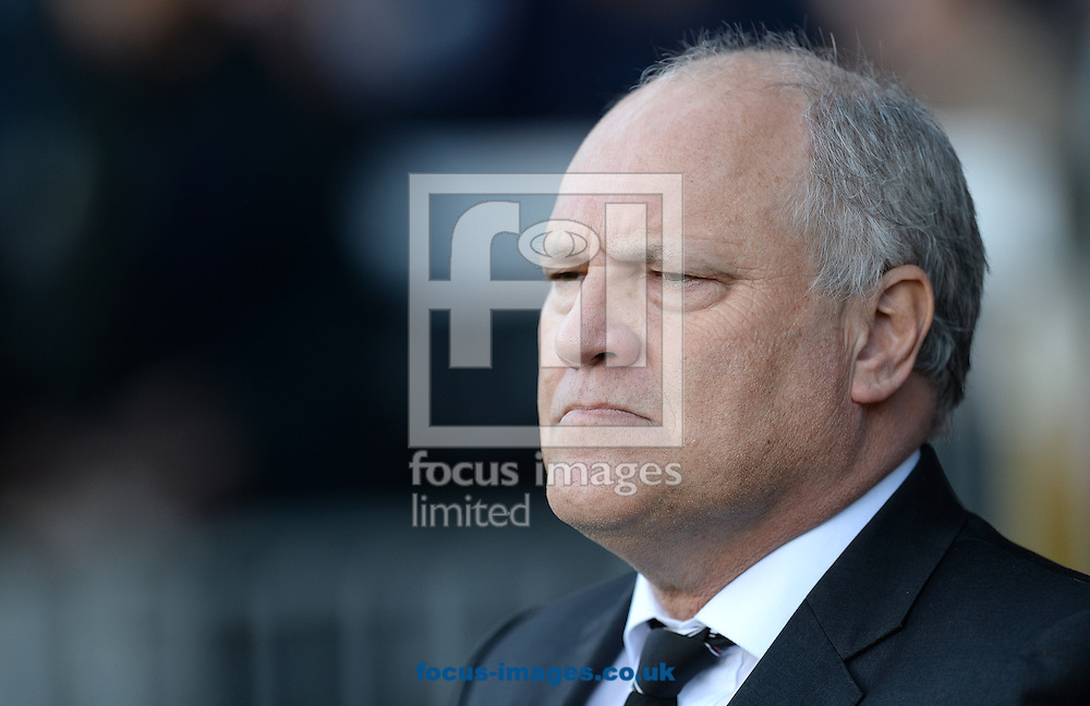 Picture by Andrew Timms/Focus Images Ltd +44 7917 236526<br /> 02/11/2013<br /> Manager of Fulham Martin Jol during the Barclays Premier League match against Manchester United at Craven Cottage, London.
