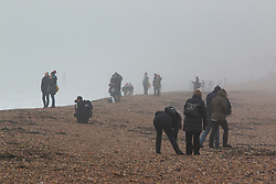 © Licensed to London News Pictures. 24/01/2016. Brighton, UK. Members of the public relax on Sunday morning as Brighton beach and Pier are covered in fog, Today January 24th 2016. Photo credit: Hugo Michiels/LNP