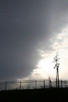 Silhouette of fence and tree with dramatic grey clouds just before the rain at a park in Dublin Ireland