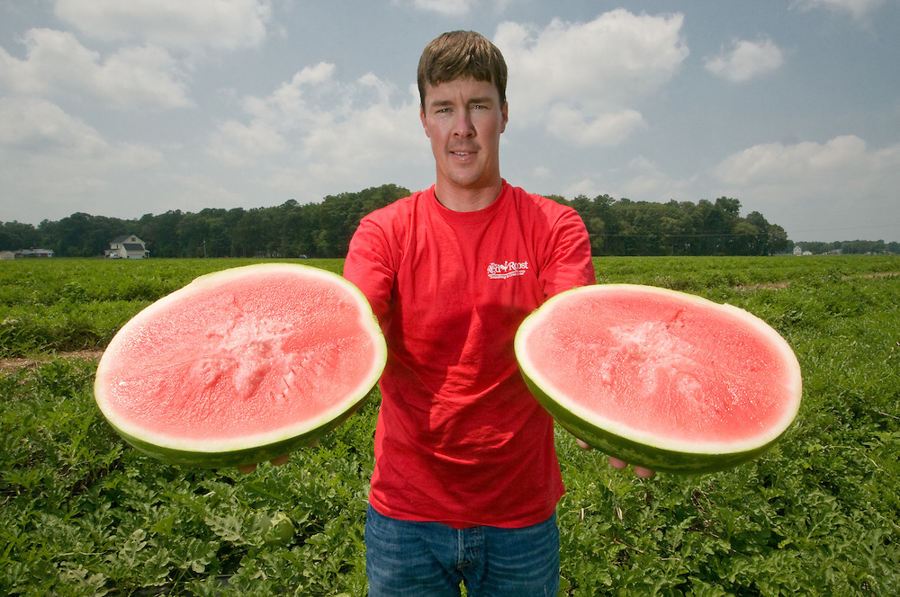 Watermelon grower holding watermelon in the field