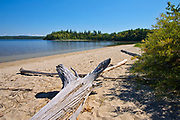 Driftwood on White Lake<br />