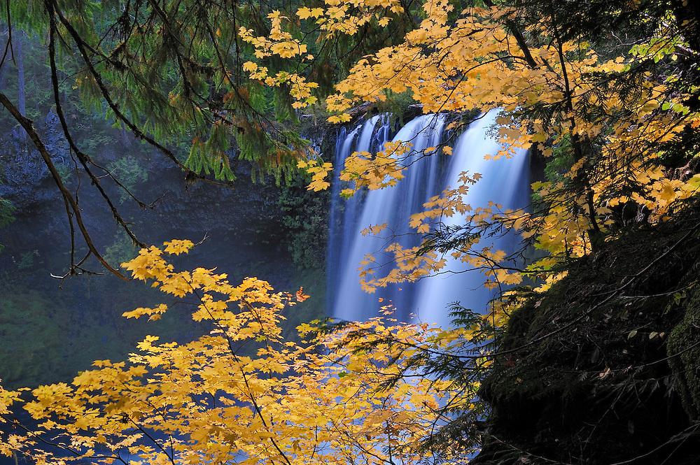 Koosah Falls,McKenzie River,Willamette National Forest,Cascade Mountains,Oregon,USA,.