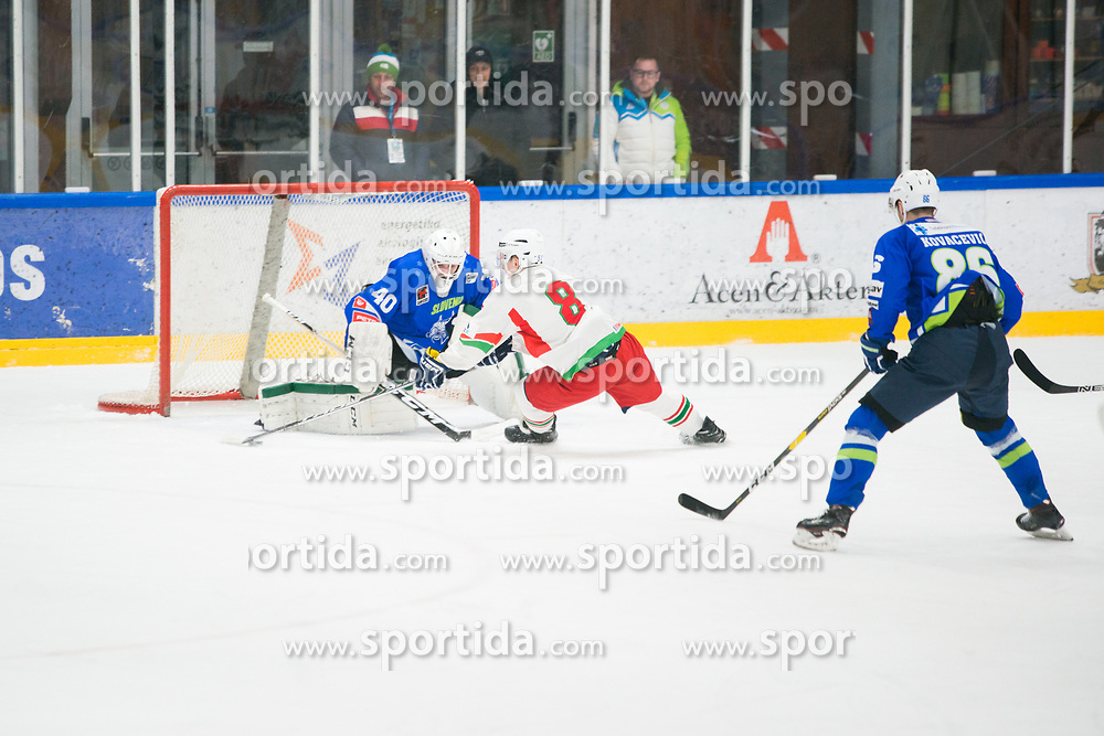 Matija Pintaric during Ice Hockey match between National teams of Slovenia and Belarus at International tournament Euro ice hockey Challenge 2019, on February 9, 2019 in Ice Arena Bled, Slovenia. Photo by Peter Podobnik / Sportida