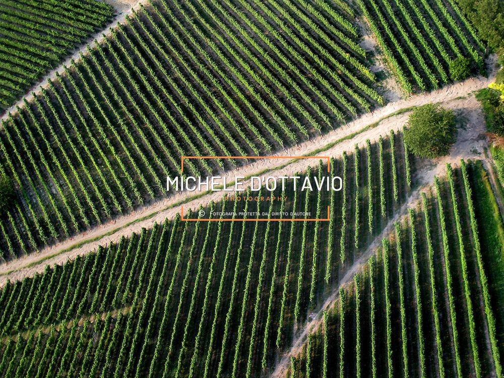 Italy, Piedmont, Langhe, near Alba, wine village Castiglione Falletto...... reportage aereo realizzato con un pallone aerostatico frenato