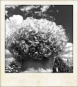 woman's curly hair in black and white against sky cellphone photography,Iphone pictures,smartphone pictures
