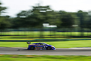 August 22-24, 2014: Virginia International Raceway. #9 Kevin O'Connell, Rick Ware Racing, Lamborghini of Torontoo