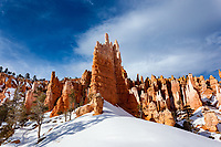 After a large snow fall in Bryce Canyon National Park, this huge monolith stands out amoung the rest like a leader of the Army.