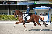 Miranda Hoezen van de Pas - Cha Cha Cha<br /> Nederlands Kampioenschap ZZ-Zwaar 2015<br /> © DigiShots