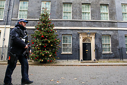 © Licensed to London News Pictures. 30/11/2019. London, UK. An armed police officer patrols Downing Street amid heightened security following the London Bridge terror attack on Friday 29 November 2019. Photo credit: Dinendra Haria/LNP